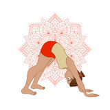 Illustration with yoga asana Stock Photography