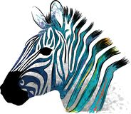 Illustration animal Zebra with watercolor stripes in background stock illustration