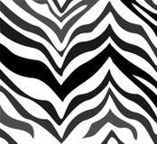 Zebra pattern. Illustration of a zebra pattern background in black, faded grey, and white royalty free illustration