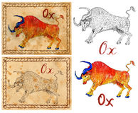 Illustration with zodiac animal - Ox Stock Images