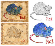 Illustration with zodiac animal - Rat or Mouse. Design set with vintage drawings of chinese calendar zodiac symbol - Rat or Mouse. Horoscope and astrological new Royalty Free Stock Photo