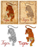 Illustration with zodiac animal - Tiger Royalty Free Stock Photography