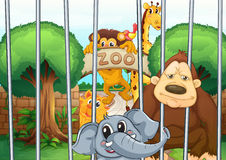 A zoo and the animals Royalty Free Stock Photography