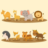 Illustration of zoo animals Royalty Free Stock Photography