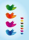 Färgrika vektorfåglar Arkivfoton