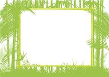 Bambudjungeln inramar Arkivbilder