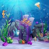 Illustrationen av havsbottnen med vaggar, alger, långhalsar vektor illustrationer