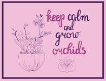 Illustrationen av orkidén blommar och stillhet för kalligraficitationsteckenuppehälle Fotografering för Bildbyråer