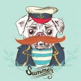 Illustrationen av piratkopierar mopshunden på blå bakgrund i vektor Royaltyfri Bild