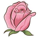 Illustrationen av steg Fotografering för Bildbyråer