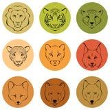 Illustrationen, die verschiedene Gesichtsfunktionen von wilden Tieren zeigen Stockfoto