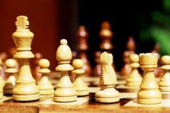 illustrationen för bakgrundsschackschackbrädet pieces white Royaltyfri Fotografi