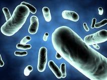 illustrationen för bakterier 3d framför Royaltyfri Bild