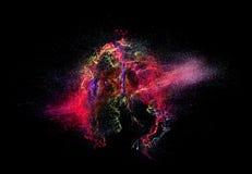 illustrationen för fractals för explosionen för abstrakt bakgrundsfärg texturerade den digitala Royaltyfri Bild