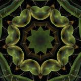 Illustrationen futuristisches geometrisches buntes psychedelischen Fractal vektor abbildung