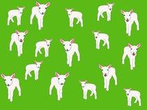 illustrationen lambs springtime vektor illustrationer