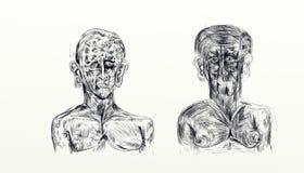 Illustrationen som göras med nankin som visar bysten av två män, sid - förbi - sidan Arkivbilder
