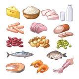 Illustrationen von verschiedenen Produkten, das Protein enthält Vektorbilder in der Karikaturart vektor abbildung