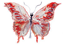 Illustrationfjärilar av olika former vektor illustrationer
