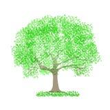 Illustrationmaterial som föreställde ny gräsplan arkivbild