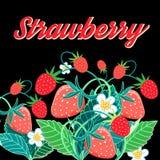 Illustrationof a bright tasty strawberry Royalty Free Stock Image