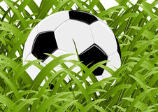 Illustrations 2010_0690. Official world cup 2010 ball between grass Royalty Free Stock Photography