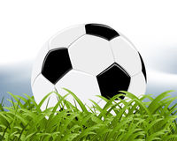 Illustrations 2010_0735. Official world cup 2010 ball between grass Stock Images