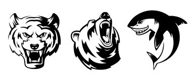 Illustrations of animals for sport badges. Grizzly, tiger and shark. Vector labels set isolate Stock Photos