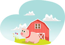 Illustrations of cartoon pig on farms. Vector Illustrations of cartoon pig on farms Royalty Free Stock Images