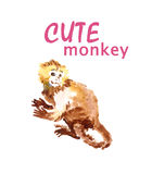 Illustrations of cute monkey Stock Images