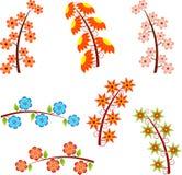Illustrations d'isolement de branches d'arbre de fleur, illustrations de fleur Photo stock