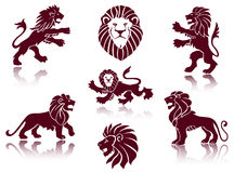 Illustrations de lion Photo stock
