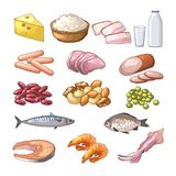 Illustrations of different products which contains protein. Vector pictures in cartoon style. Healthy product milk and meat vector vector illustration