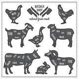 Illustrations of domestic animals silhouettes with cut lines of different parts vector illustration