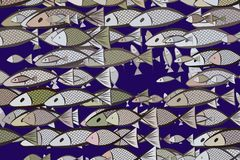 Illustrations of fish. Concept, cartoon, ocean & style. Illustrations of fish. Good for web page, wallpaper, graphic design, catalog, texture or background Royalty Free Stock Photo