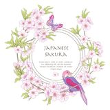 Illustrations with Japanese blossom pink sakura and birds with p Royalty Free Stock Photos