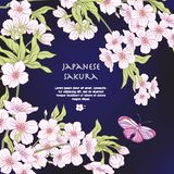 Illustrations with Japanese blossom pink sakura and butterfly Royalty Free Stock Photos