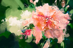 Illustrations orange hibiscus pink style portrait oil painting - Stock Image Royalty Free Stock Photography