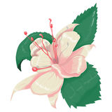 Illustrations pink flower. With highlights royalty free illustration