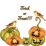 Illustrations réglées de Halloween de gouache d'aquarelle d'isolement sur le petit morceau illustration de vecteur