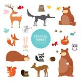 Illustrations sauvages mignonnes créatives de vecteur de Forest Animals Photographie stock