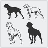 Illustrations and silhouettes of dogs. Black and white design. Royalty Free Stock Images
