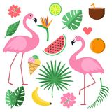 Illustrations with summer symbols. Tropical fruits and flowers royalty free illustration