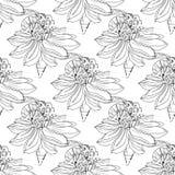 Illustrations tirées par la main d'une abeille sur une fleur, pollinisation, main-dessin Configuration sans joint Image stock