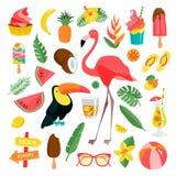 Illustrations tropicales réglées illustration de vecteur