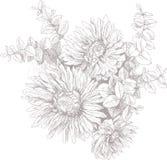 Illustrationsblüten-Gartenblumen der Weinlese botanische Stockfotografie