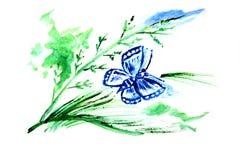 Illustrationsblau batterfly Lizenzfreies Stockfoto