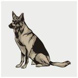 Illustrationsvektor des Hundes Lizenzfreie Stockbilder