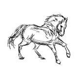 Illustrationsvektorhand gezeichnet von galoppierenden Pferden auf w Lizenzfreie Stockfotos