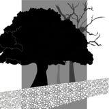 Illustrationträd och väg i svartvitt Fotografering för Bildbyråer